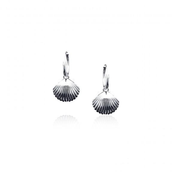 Scallop - Hoop Earrings