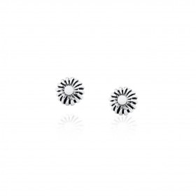 Pikul smooth / Stud Earrings