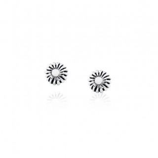 Pikul smooth / Stud Earrings
